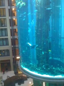 Berlin-fevrier--aquarium-hotel-radisson