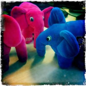 elephant-rose-bleu-peluche-sexe-echographie