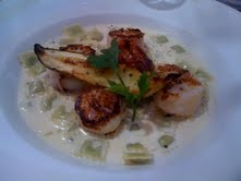 we-marine-coquilles-st-jacques