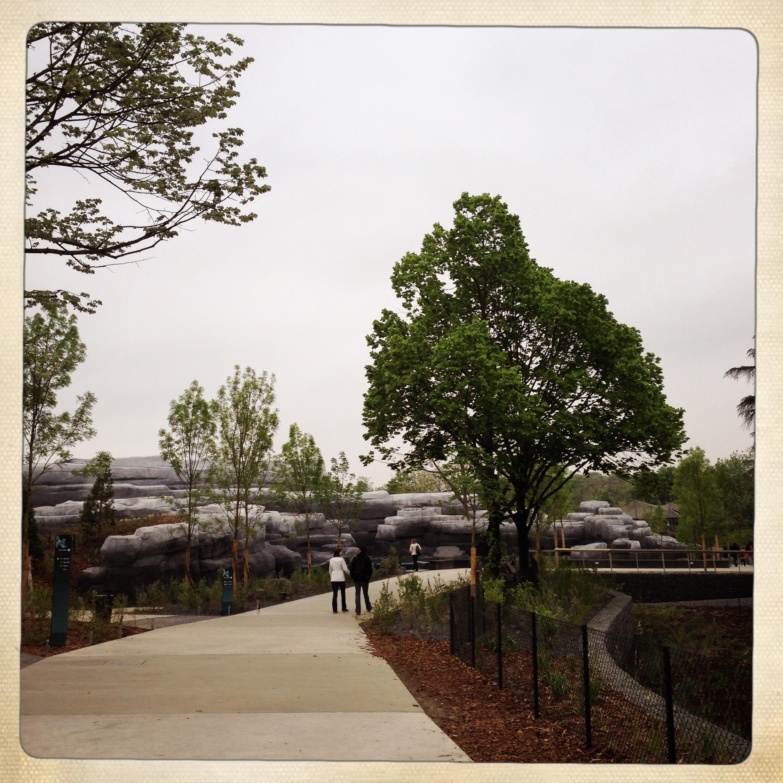 Le zoo de vincennes d sormais nomm parc zoologique de paris la visite tes - Coup de coeur immobilier vincennes ...