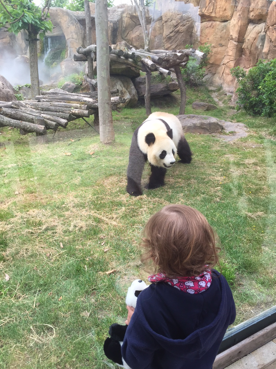 Un long week end au zooparc de beauval pmgirl for Appart hotel zoo de beauval