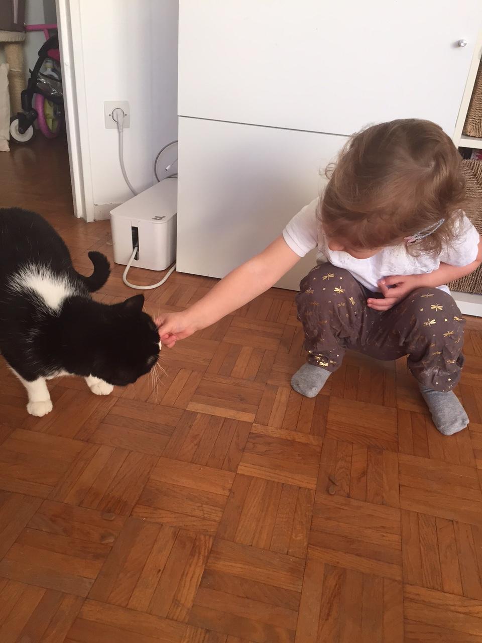 chat et enfant photo