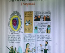 blog Les Culottées