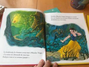 v avis Mon petit Livre d'or Disney