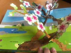 le livre pop up du printemps avis