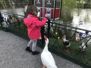 activités en famille à Copenhague. tivoli canards